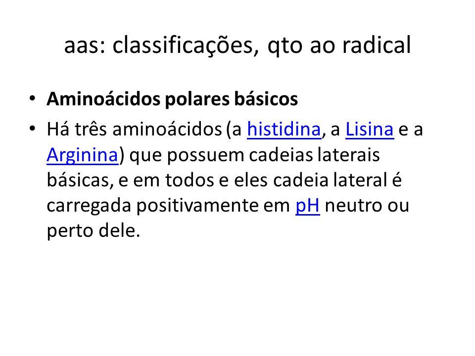 aas: classificações, qto ao radical Aminoácidos polares básicos Há três aminoácidos (a histidina, a Lisina e a Arginina) que possuem cadeias laterais