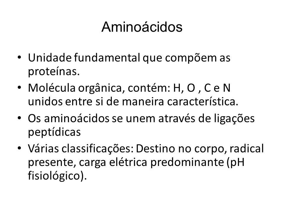 Aminoácidos Unidade fundamental que compõem as proteínas. Molécula orgânica, contém: H, O, C e N unidos entre si de maneira característica. Os aminoác