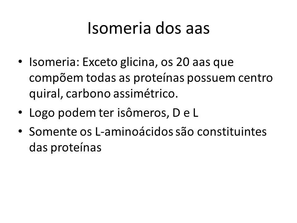 Isomeria dos aas Isomeria: Exceto glicina, os 20 aas que compõem todas as proteínas possuem centro quiral, carbono assimétrico. Logo podem ter isômero