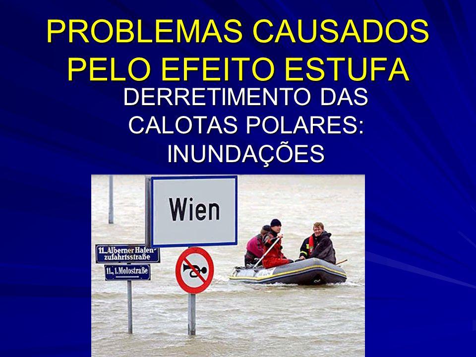 PROBLEMAS CAUSADOS PELO EFEITO ESTUFA DERRETIMENTO DAS CALOTAS POLARES: INUNDAÇÕES