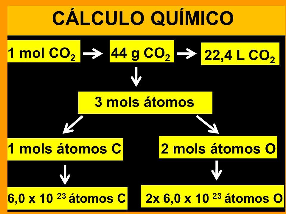 CÁLCULO QUÍMICO 1 mol CO 2 44 g CO 2 22,4 L CO 2 1 mols átomos C2 mols átomos O 6,0 x 10 23 átomos C2x 6,0 x 10 23 átomos O 6,0 x 10 23 moléculas 3 mols átomos