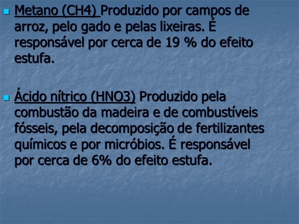 Metano (CH4) Produzido por campos de arroz, pelo gado e pelas lixeiras. É responsável por cerca de 19 % do efeito estufa. Metano (CH4) Produzido por c