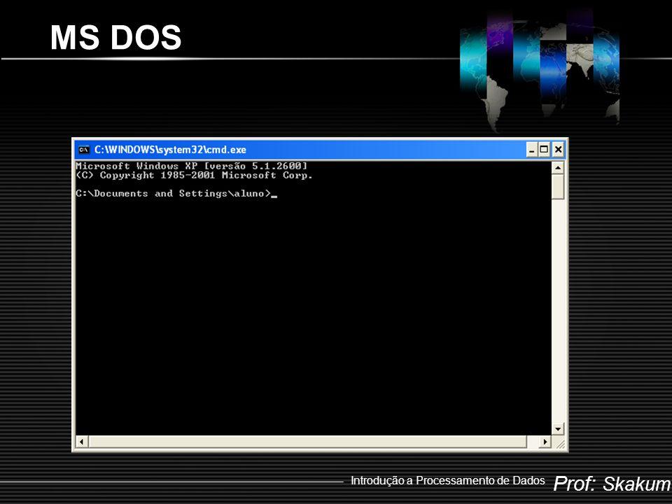 Prof: Skakum Introdução a Processamento de Dados Windows