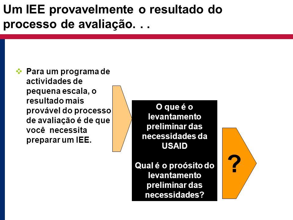Um IEE provavelmente o resultado do processo de avaliação...  Para um programa de actividades de pequena escala, o resultado mais provável do process