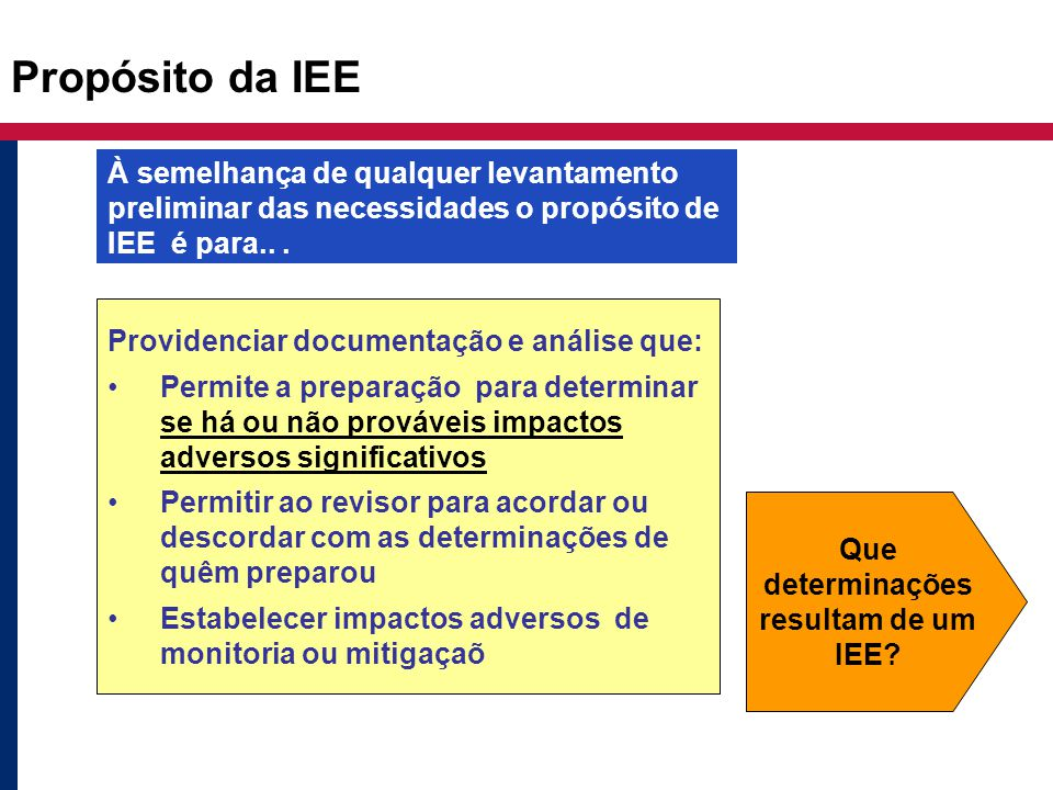Propósito da IEE Providenciar documentação e análise que: Permite a preparação para determinar se há ou não prováveis impactos adversos significativos