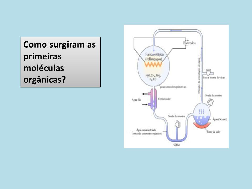 Como surgiram as primeiras moléculas orgânicas?