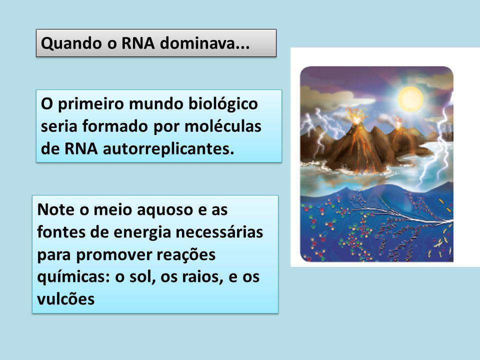 O primeiro mundo biológico seria formado por moléculas de RNA autorreplicantes. Quando o RNA dominava... Note o meio aquoso e as fontes de energia nec
