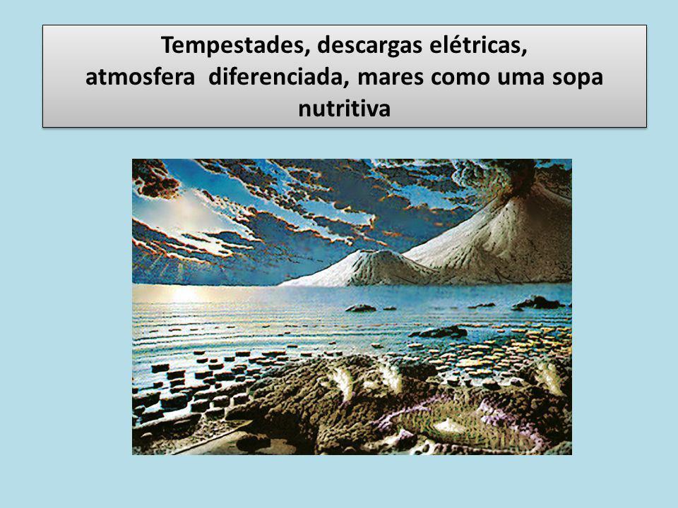 Tempestades, descargas elétricas, atmosfera diferenciada, mares como uma sopa nutritiva Tempestades, descargas elétricas, atmosfera diferenciada, mare