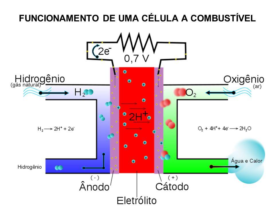 FUNCIONAMENTO DE UMA CÉLULA A COMBUSTÍVEL