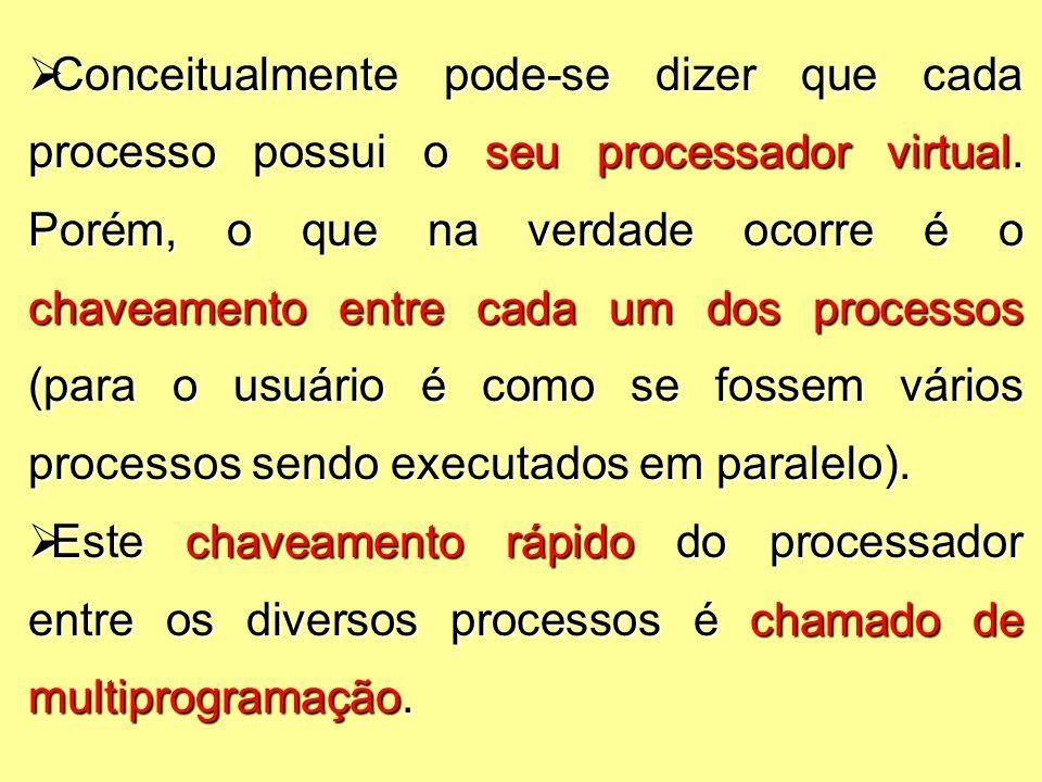  Conceitualmente pode-se dizer que cada processo possui o seu processador virtual.