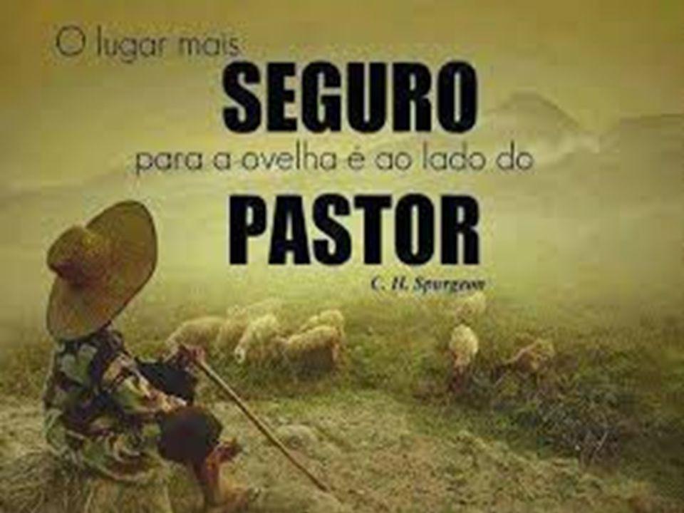 3) Jesus é o bom pastor Eu sou o bom pastor (v.