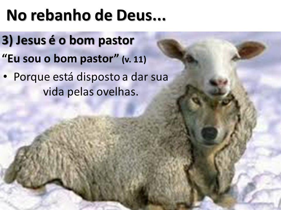 """3) Jesus é o bom pastor """"Eu sou o bom pastor"""" (v. 11) Porque está disposto a dar sua vida pelas ovelhas."""