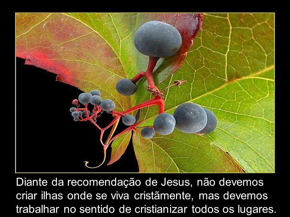 Diante da recomendação de Jesus, não devemos criar ilhas onde se viva cristãmente, mas devemos trabalhar no sentido de cristianizar todos os lugares.