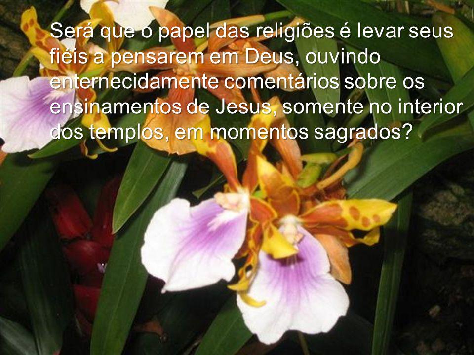 Será que o papel das religiões é levar seus fiéis a pensarem em Deus, ouvindo enternecidamente comentários sobre os ensinamentos de Jesus, somente no interior dos templos, em momentos sagrados
