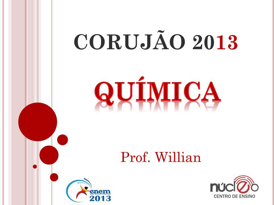 CORUJÃO 2013 Prof. Willian