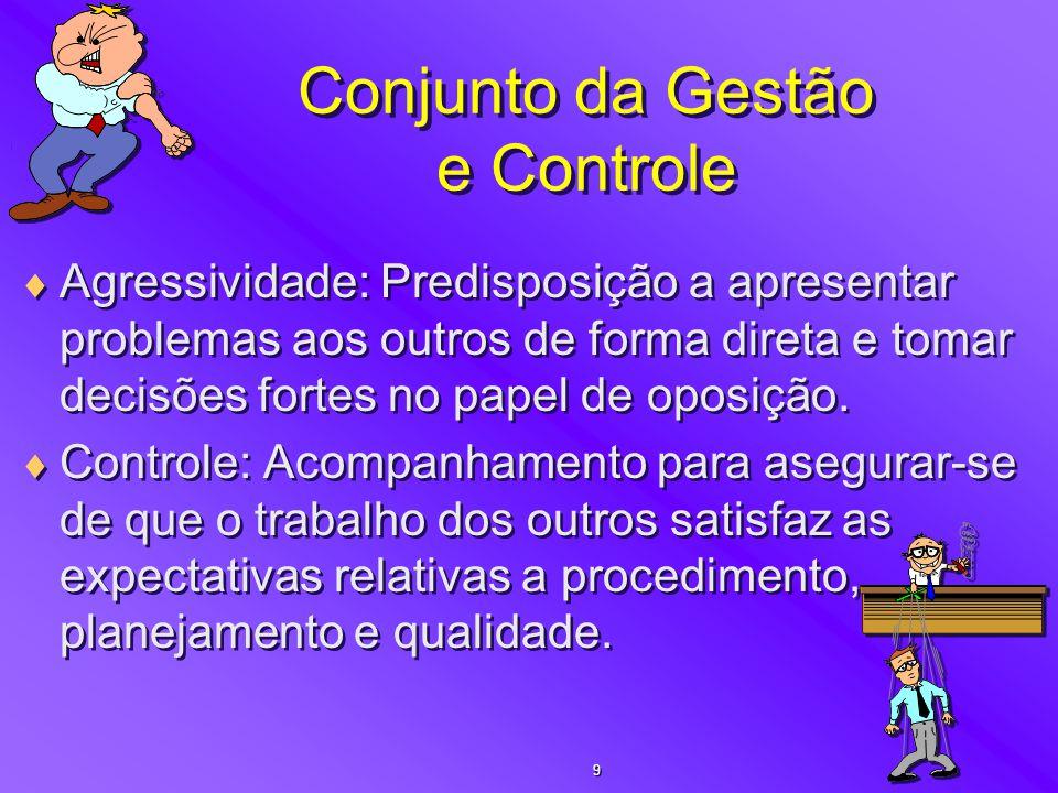 Conjunto da Gestão e Controle  Agressividade: Predisposição a apresentar problemas aos outros de forma direta e tomar decisões fortes no papel de opo