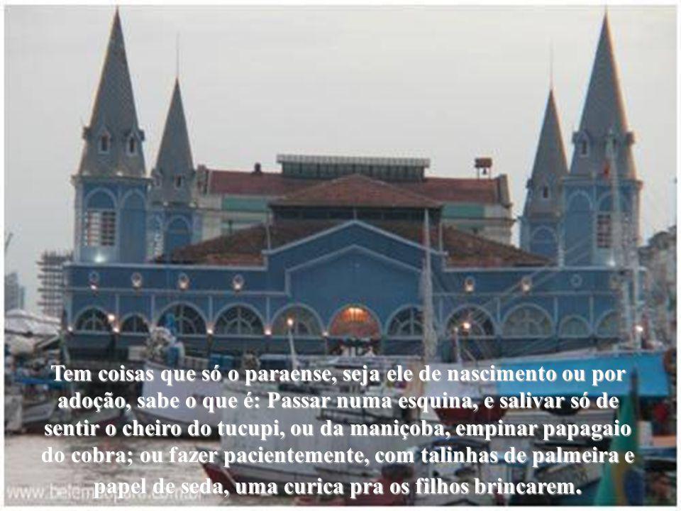 Autoria: Cândida Maria Interpretação musical: Flor do Grão Pará Lucinha Bastos Formatação: Ná Noronha