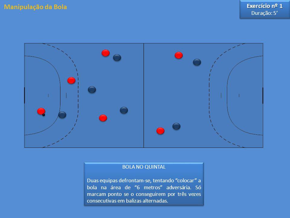 3 3 4 4 5 5 6 6 2 2 Circulação de bola especial, alternando um passe longo com um curto, com a seguinte sequência: 4-6-5-3-4-2-3-5-4 Manipulação da Bola Exercício nº 2 Duração: 4' Exercício nº 2 Duração: 4'