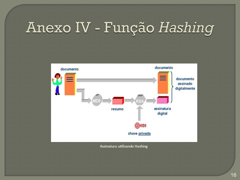 Anexo IV - Função Hashing Assinatura utilizando Hashing 16