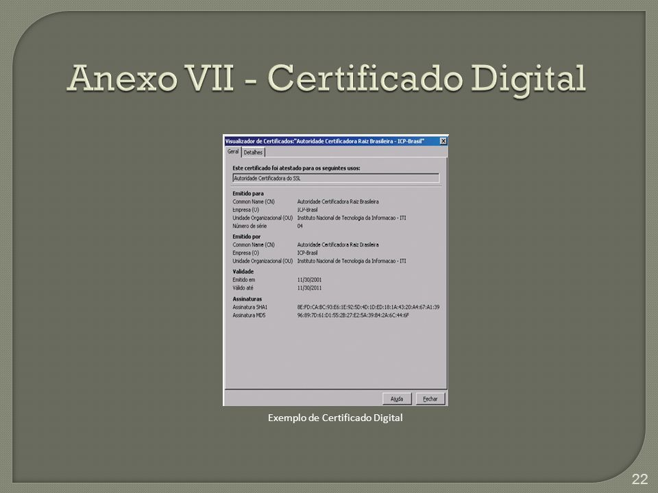 Anexo VII - Certificado Digital Exemplo de Certificado Digital 22