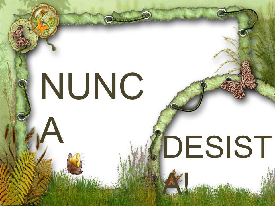 NUNC A DESIST A!
