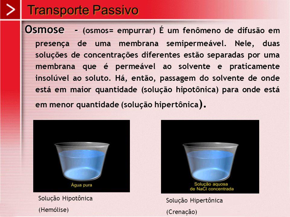 Osmose - Osmose - (osmos= empurrar) É um fenômeno de difusão em presença de uma membrana semipermeável. Nele, duas soluções de concentrações diferente