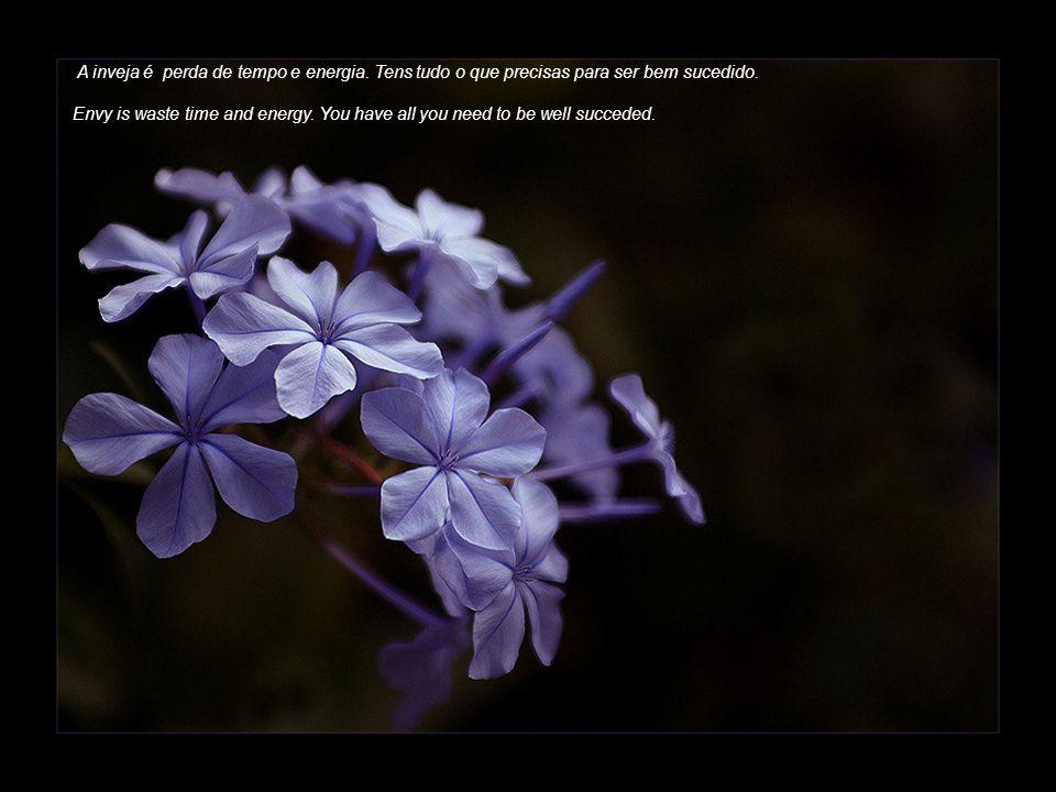 Ajuda sempre os outros. O que semeias hoje, colherás amanhã.