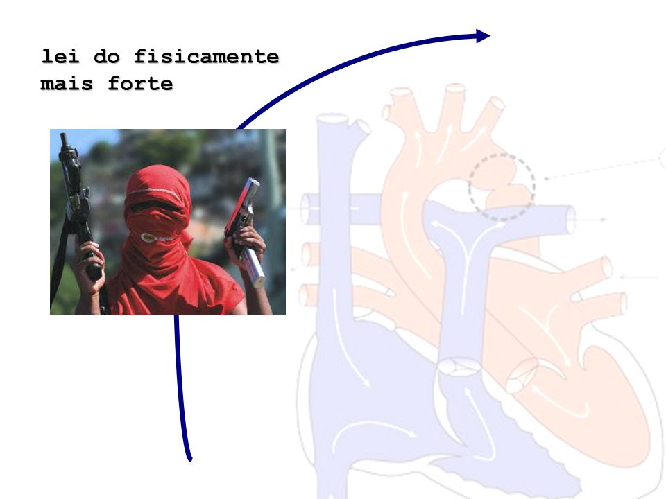 lei do fisicamente mais forte