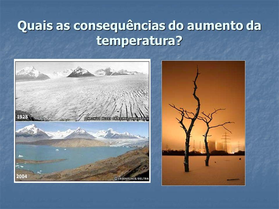 OBJECTIVOS Compreender como aumenta a temperatura numa estufa.