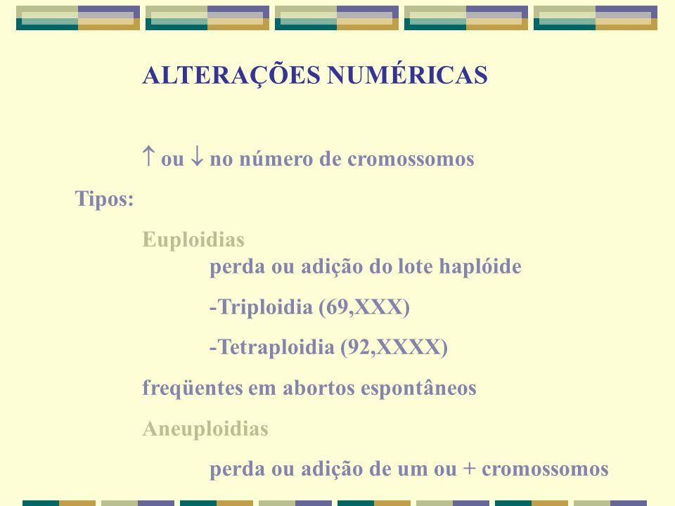 ALTERAÇÕES NUMÉRICAS  ou  no número de cromossomos Tipos: Euploidias perda ou adição do lote haplóide -Triploidia (69,XXX) -Tetraploidia (92,XXXX) f