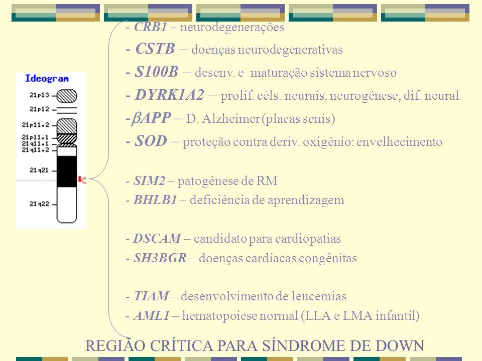 - CRB1 – neurodegenerações - CSTB – doenças neurodegenerativas - S100B – desenv. e maturação sistema nervoso - DYRK1A2 – prolif. céls. neurais, neurog