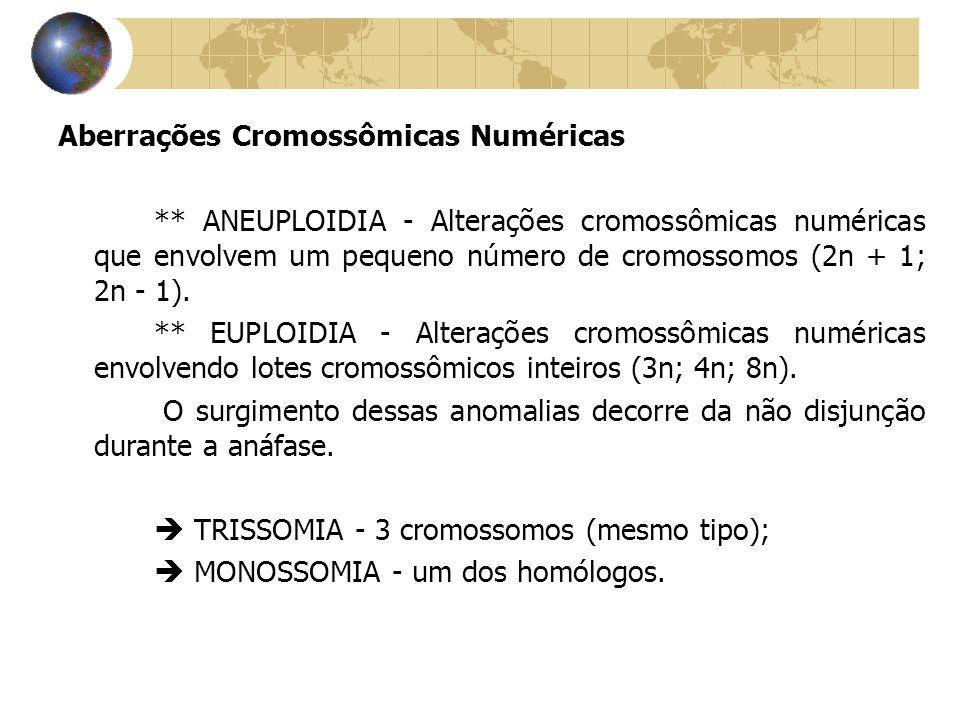 Aberrações Cromossômicas Numéricas ** ANEUPLOIDIA - Alterações cromossômicas numéricas que envolvem um pequeno número de cromossomos (2n + 1; 2n - 1).
