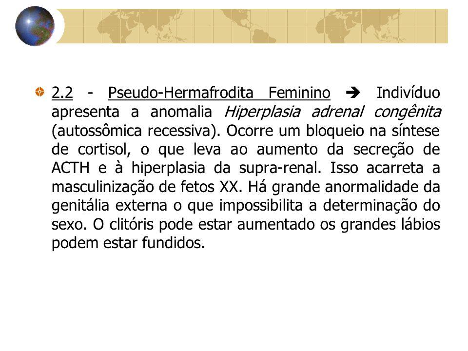 2.2 - Pseudo-Hermafrodita Feminino  Indivíduo apresenta a anomalia Hiperplasia adrenal congênita (autossômica recessiva). Ocorre um bloqueio na sínte