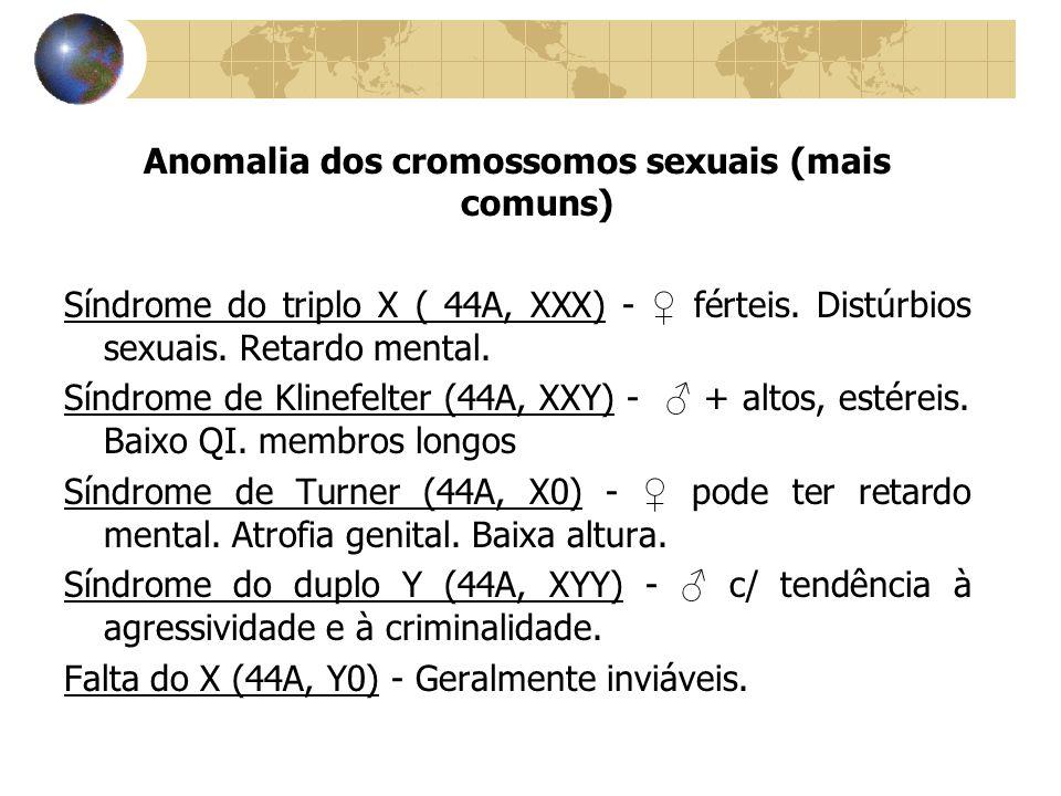 Anomalia dos cromossomos sexuais (mais comuns) Síndrome do triplo X ( 44A, XXX) - ♀ férteis. Distúrbios sexuais. Retardo mental. Síndrome de Klinefelt