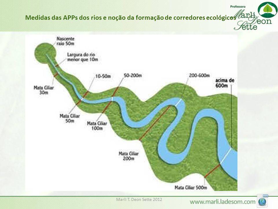 Marli T. Deon Sette 2012 Medidas das APPs dos rios e noção da formação de corredores ecológicos