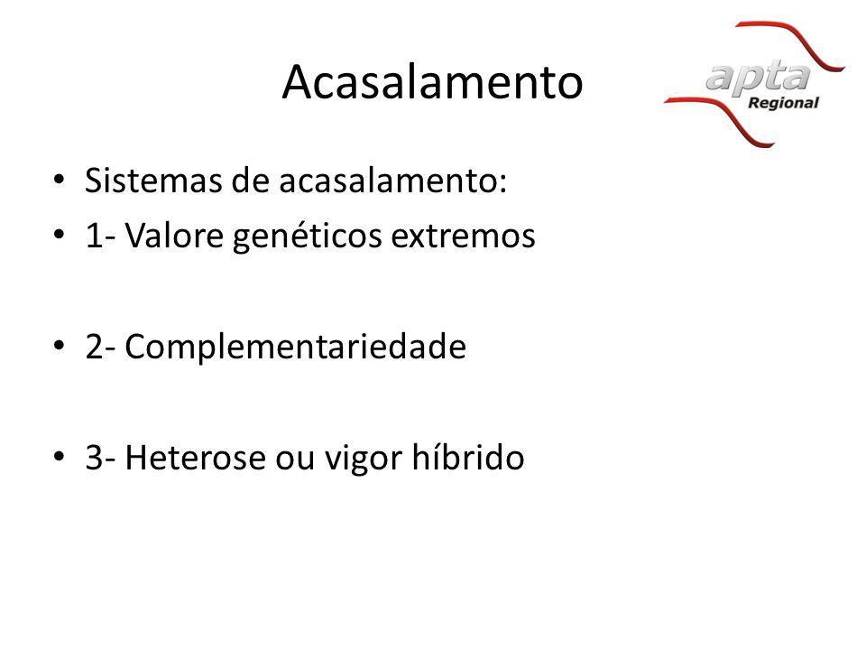Acasalamento Sistemas de acasalamento: 1- Valore genéticos extremos 2- Complementariedade 3- Heterose ou vigor híbrido