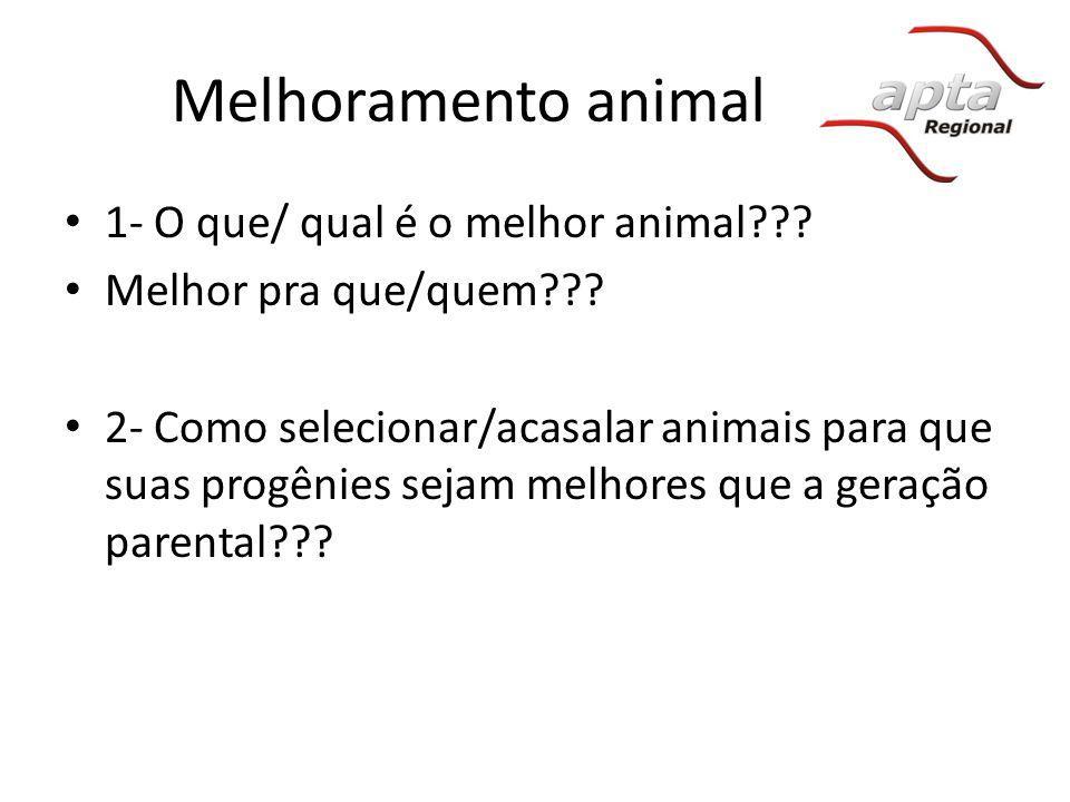 1- Melhor animal: Melhor – relativo – ambiente Característica – observável (aparência), mensurável Fenótipo – categoria ou nível de performance de uma característica Melhoramento – Alterar geneticamente uma população.