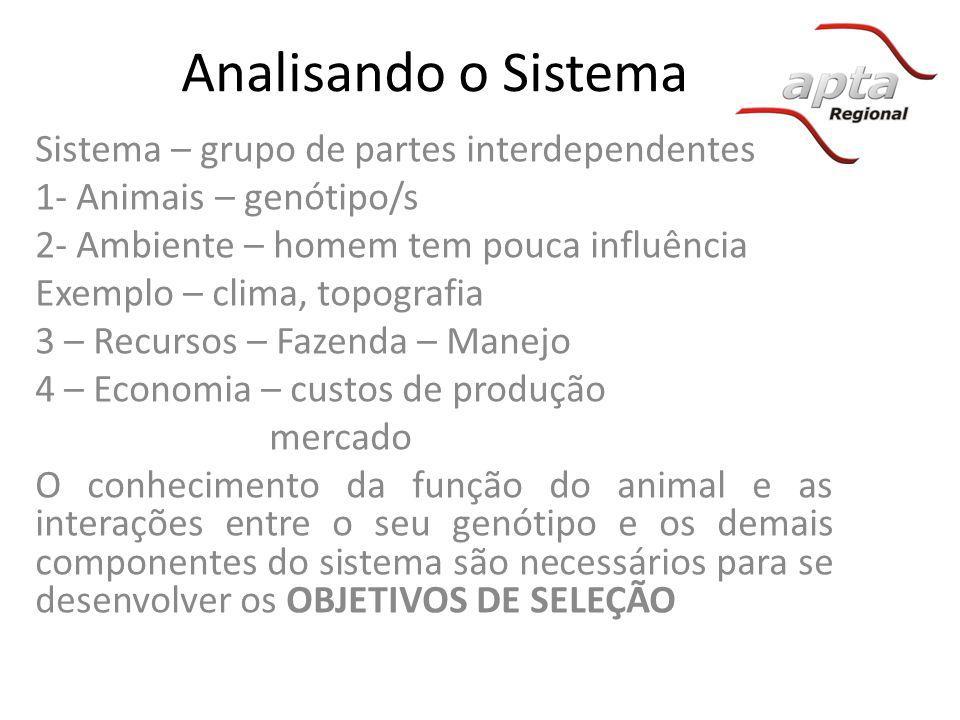 Analisando o Sistema Sistema – grupo de partes interdependentes 1- Animais – genótipo/s 2- Ambiente – homem tem pouca influência Exemplo – clima, topo