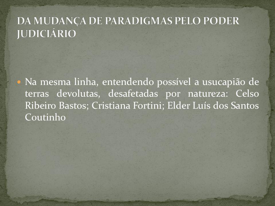 Na mesma linha, entendendo possível a usucapião de terras devolutas, desafetadas por natureza: Celso Ribeiro Bastos; Cristiana Fortini; Elder Luís dos