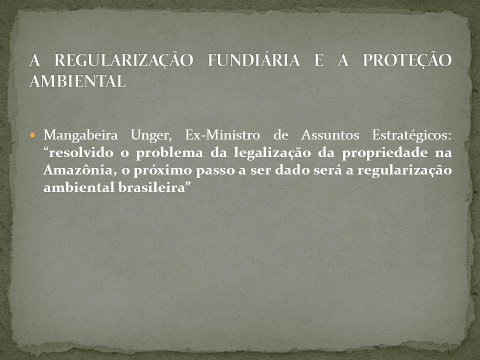 Mangabeira Unger, Ex-Ministro de Assuntos Estratégicos: resolvido o problema da legalização da propriedade na Amazônia, o próximo passo a ser dado será a regularização ambiental brasileira