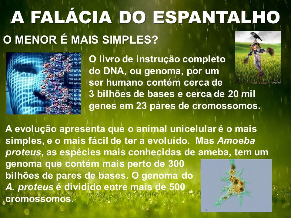O MENOR É MAIS SIMPLES? A FALÁCIA DO ESPANTALHO O livro de instrução completo do DNA, ou genoma, por um ser humano contém cerca de 3 bilhões de bases
