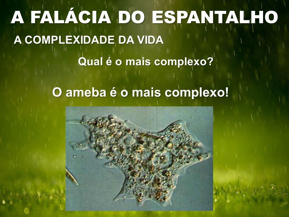 Qual é o mais complexo O ameba é o mais complexo! A COMPLEXIDADE DA VIDA A FALÁCIA DO ESPANTALHO