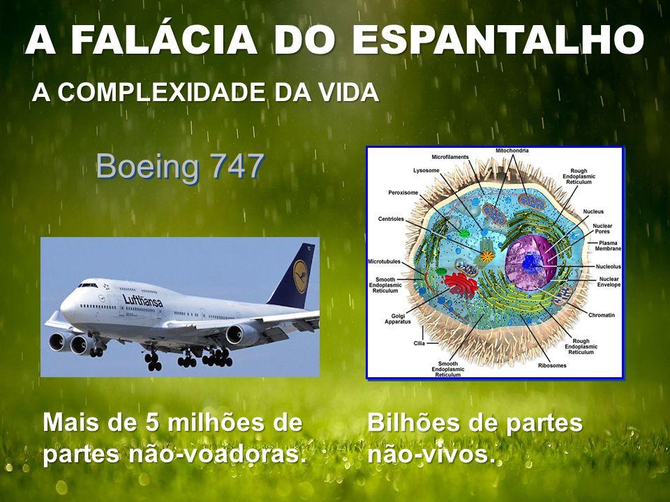 A COMPLEXIDADE DA VIDA Boeing 747 Bilhões de partes não-vivos. Mais de 5 milhões de partes não-voadoras. A FALÁCIA DO ESPANTALHO