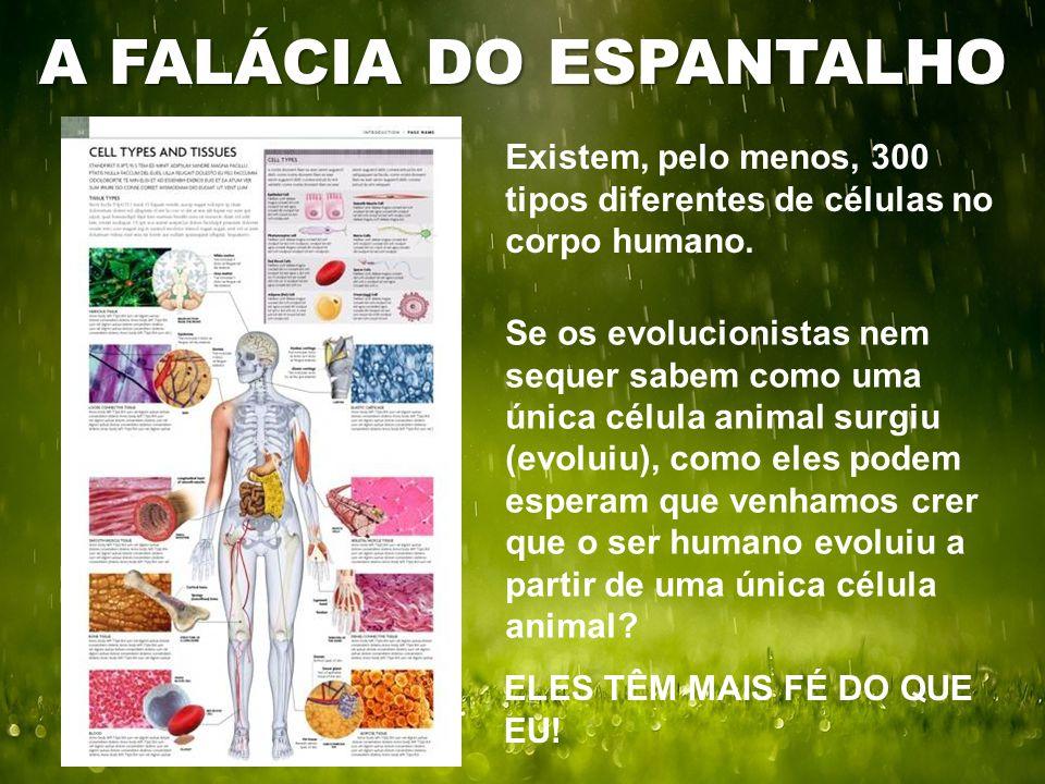 Existem, pelo menos, 300 tipos diferentes de células no corpo humano. A FALÁCIA DO ESPANTALHO Se os evolucionistas nem sequer sabem como uma única cél