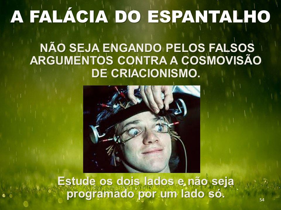 A FALÁCIA DO ESPANTALHO NÃO SEJA ENGANDO PELOS FALSOS ARGUMENTOS CONTRA A COSMOVISÃO DE CRIACIONISMO. NÃO SEJA ENGANDO PELOS FALSOS ARGUMENTOS CONTRA