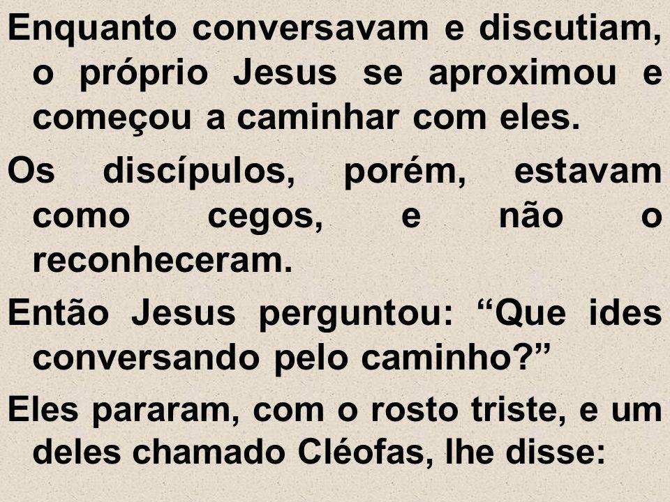 Enquanto conversavam e discutiam, o próprio Jesus se aproximou e começou a caminhar com eles. Os discípulos, porém, estavam como cegos, e não o reconh