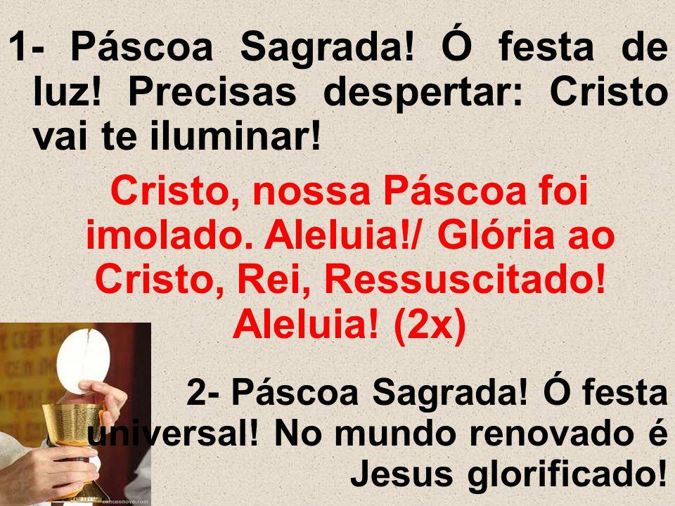 1- Páscoa Sagrada! Ó festa de luz! Precisas despertar: Cristo vai te iluminar! Cristo, nossa Páscoa foi imolado. Aleluia!/ Glória ao Cristo, Rei, Ress
