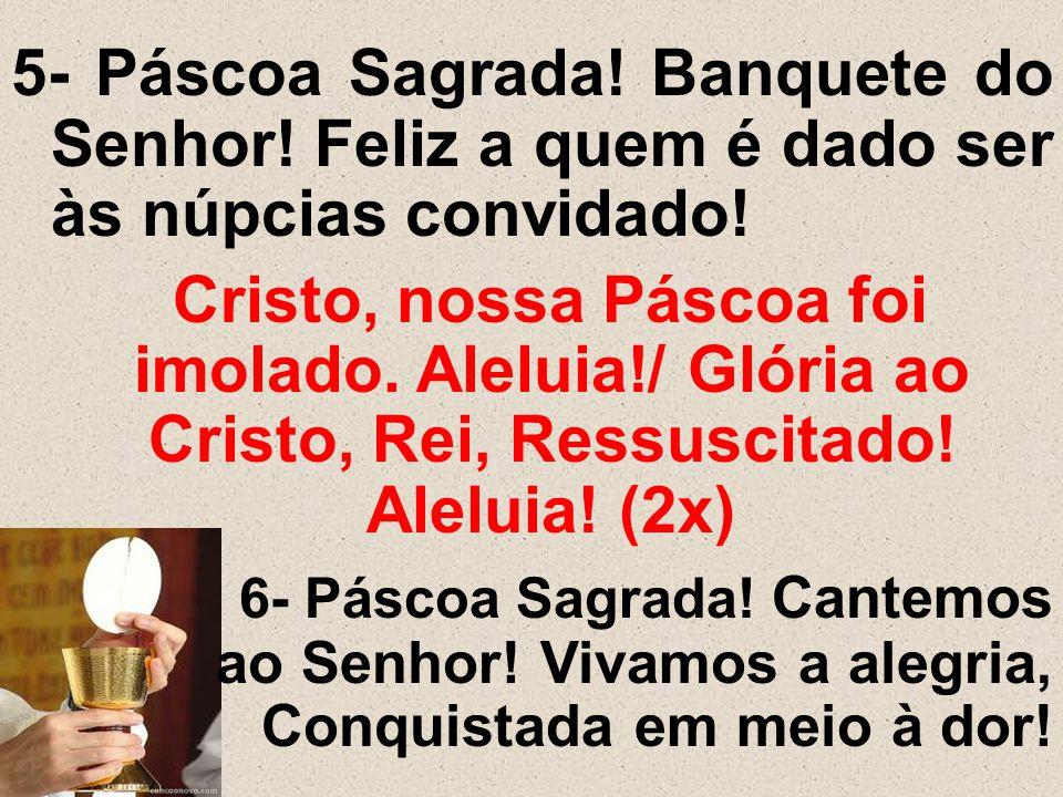 5- Páscoa Sagrada! Banquete do Senhor! Feliz a quem é dado ser às núpcias convidado! Cristo, nossa Páscoa foi imolado. Aleluia!/ Glória ao Cristo, Rei