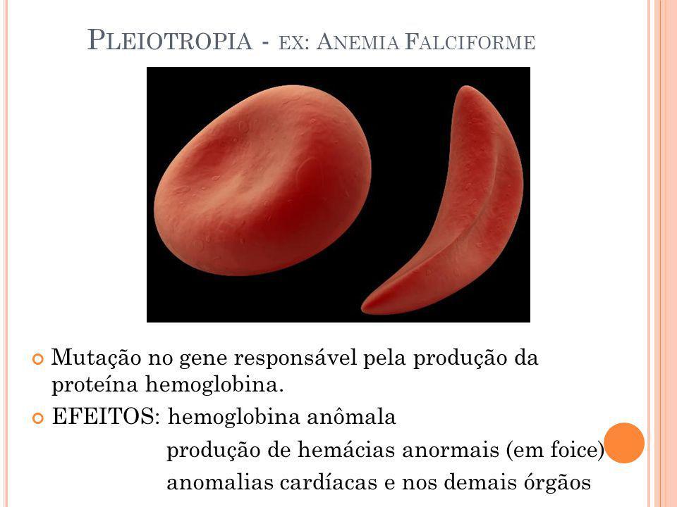P LEIOTROPIA - EX : A NEMIA F ALCIFORME Mutação no gene responsável pela produção da proteína hemoglobina. EFEITOS: hemoglobina anômala produção de he