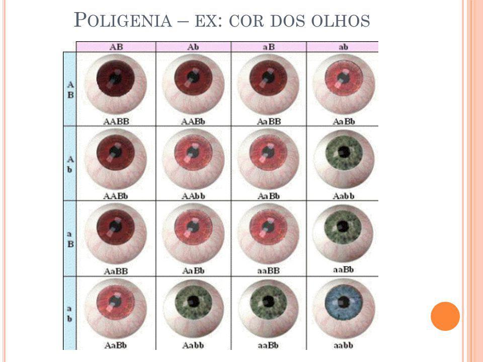 P OLIGENIA – EX : COR DOS OLHOS